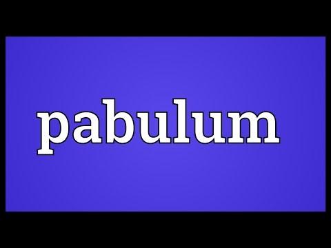 Pabulum Meaning