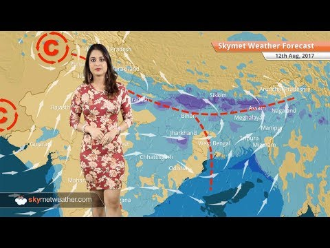 Weather Forecast for Aug 12: Rain in Lucknow, Patna, Kolkata; floods in Assam, UP, Bihar