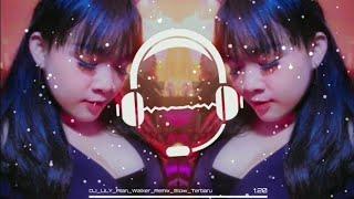 #Lagu Story Wa Terbaru DJ LiLY Alan Walker Versi Remix Slow