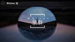 Wolves 狼群 - Selena Gomez 席琳娜, Marshmello 棉花糖, 中文字幕 (Jonah Baker Cover)