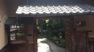 祇園甲部  西村  亜佐子さん thumbnail