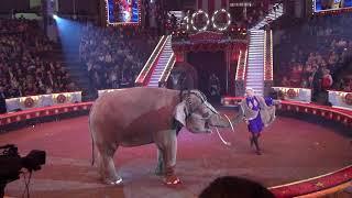 2 отделение. 11 часть. 100-летие отечественного государственного цирка