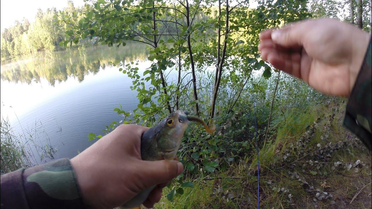 Смотреть ловля окуня на резину баллист