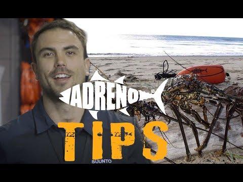 Catching Crayfish | ADRENO