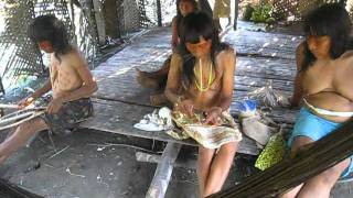 Amazon Explorer - Expedition to the Matses tribe - Peru