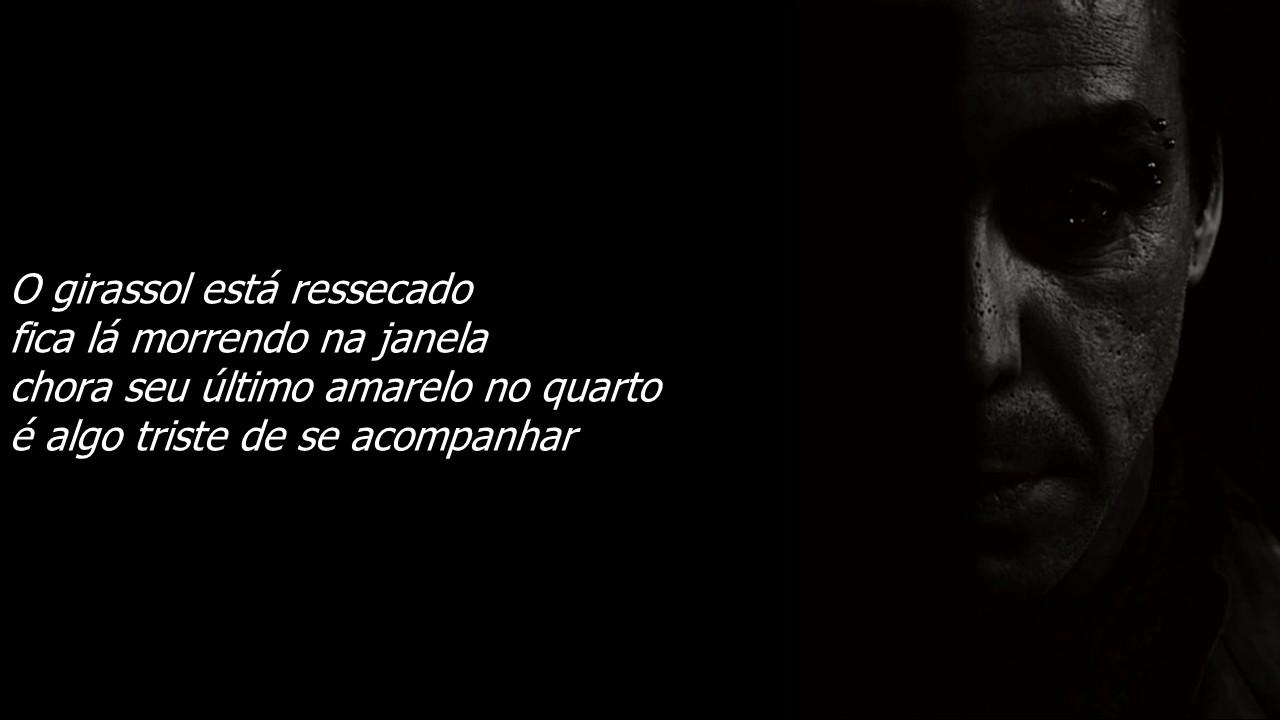 Poema De Till Lindemann Medo Tradução Português Br