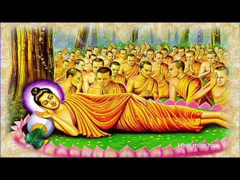 SBTN-DC News: Nhặt Lá Bồ Đề: Lời Dặn Dò Cuối Cùng Của Đức Phật