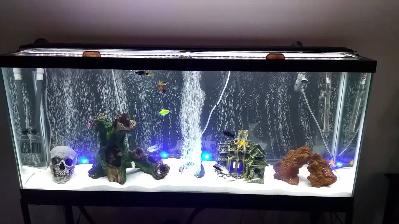 Fully upgraded 55 gallon aquarium led lights youtube for 50 gallon fish tank dimensions