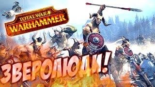 Total War Warhammer - ЗВЕРОЛЮДЫ! ОБЗОР И ПРОХОЖДЕНИЕ!