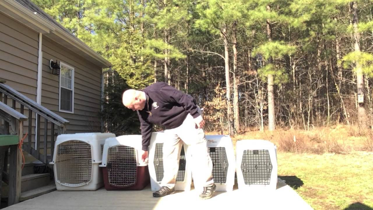 Ruff Tough Kennel Reviews >> Best Friends Dog Training Review Ruff Tough Kennels Episode 5
