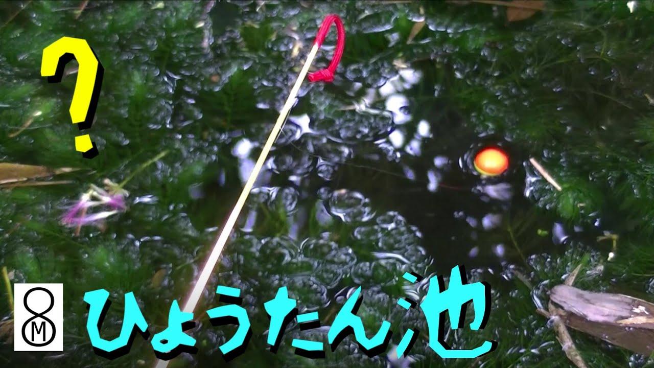 一年放置したひょうたん池で釣りをしてみた