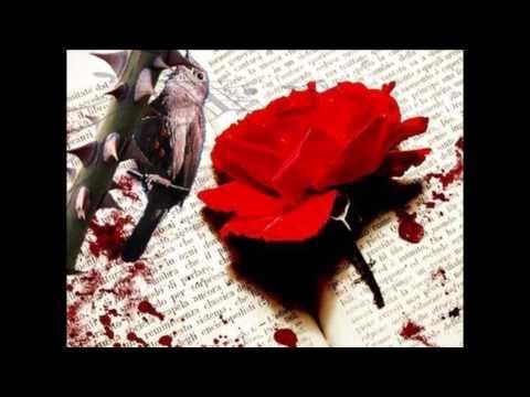 con-tinta-sangre-y-nuestro-amor..-charlie-zaa