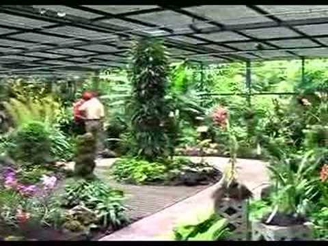 Beautiful Country Singapore  National Orchid Garden   YouTube