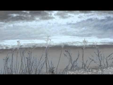 Rain Worthington - Shredding Glass - for orchestra (excerpt)