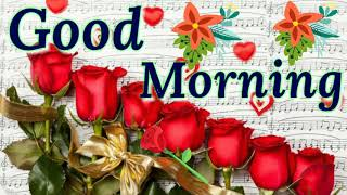 Good morning video - Beautiful & sweet whatsapp video,Greetings, Wishes, Hindi Quotes, love status