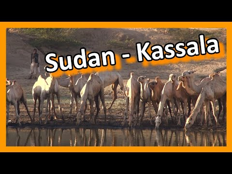 Sudan - Kassala