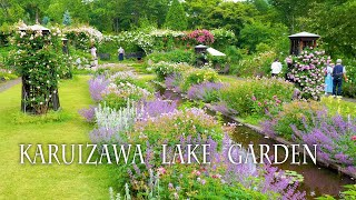 KARUIZAWA LAKE GARDEN 2021. Roses are in full bloom on a plateau in the rainy season.#軽井沢レイクガーデン #4K