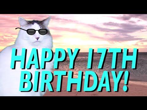 Happy 17th Birthday Epic Cat Happy Birthday Song Youtube