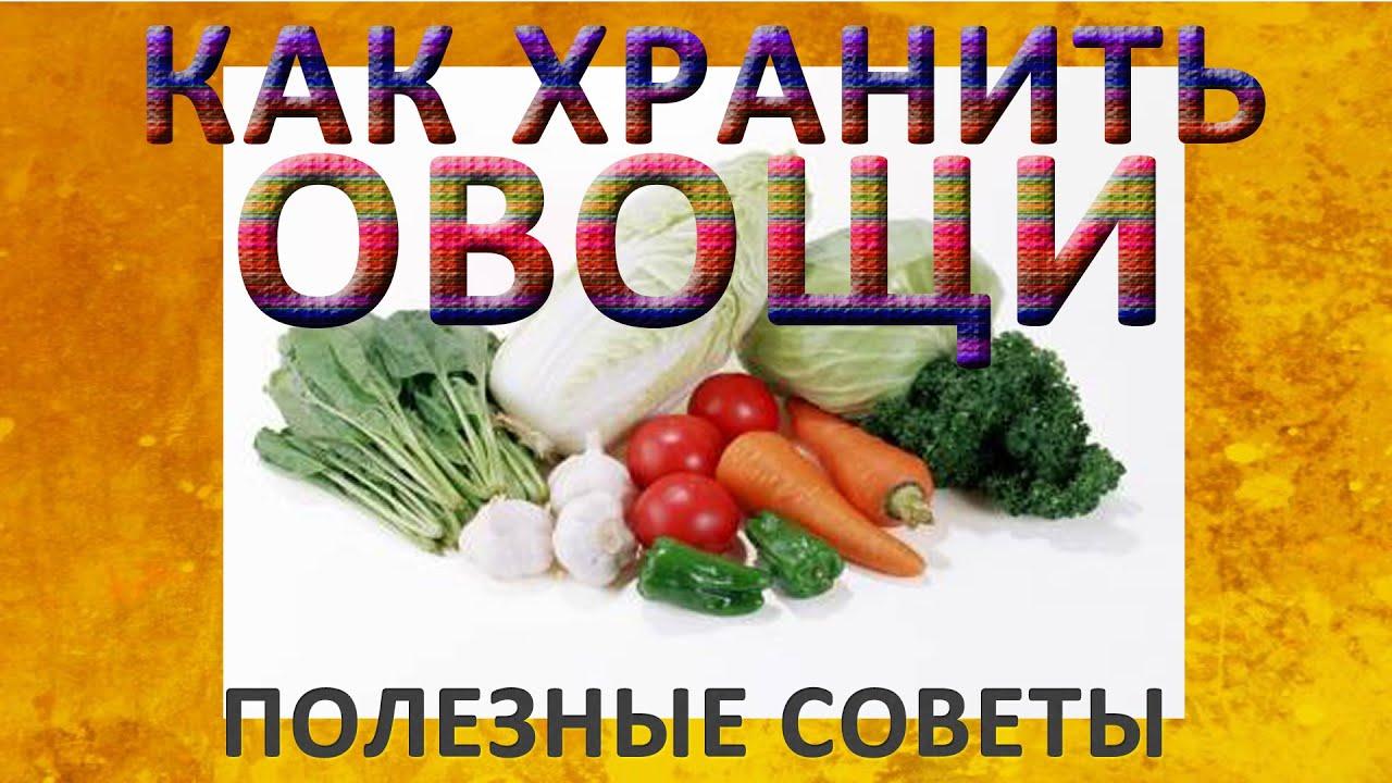 Как сохранить урожай овощей на зиму