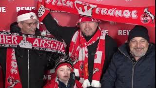 Spieltag 1 fc köln vs augsburg ...