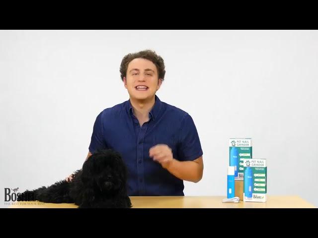 Product Video - BOSHEL Dog Nail Grinder⠀