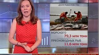 Новости экономики. Новости. 17/07/2018. GuberniaTV