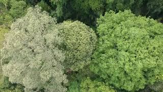 Drone Hulu Langat Dam
