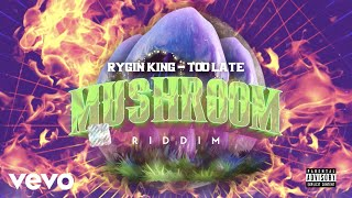 Rygin king - Too Late (Official Audio)