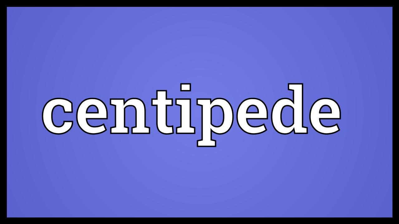 Centipede Meaning