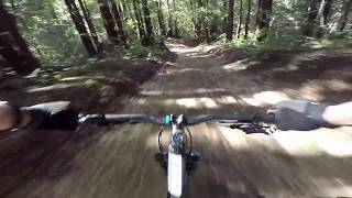 Skeggs MTB - Crosscut & Timberview down