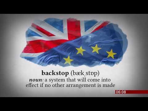 Single-use, backstop, floss words of the year list (UK) - BBC News - 7th November 2018