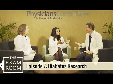 Why Animal Models Fail in Diabetes Research | The Exam Room
