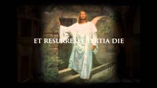 Creed Latin Credo