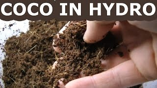 Coco Coir In Hydroponics