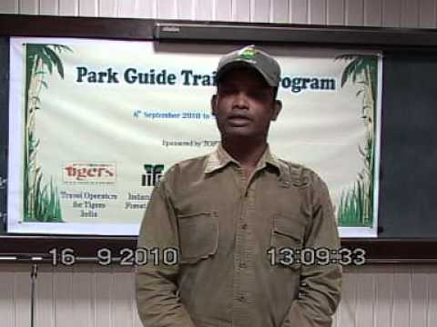 Wildland Sponsored Tiger Park Guide Vinod Ayam