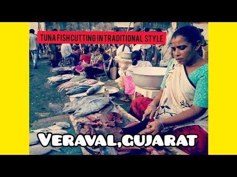Tuna Fish Cutting,  Veraval  Gujarat