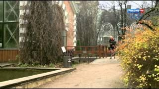 Особый случай 2013  Osobyj sluchaj 84 2013 HDTVRip