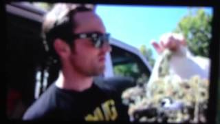 Matthew Shotwell Gets His Weed Back