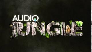 Music - Adventure in The Jungle   AudioJungle