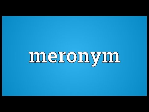 Meronym Meaning
