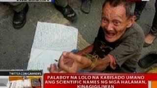 BT: Palaboy na lolo na kabisado ang scientific names ng mga halaman sa Manila, kinagigiliwan
