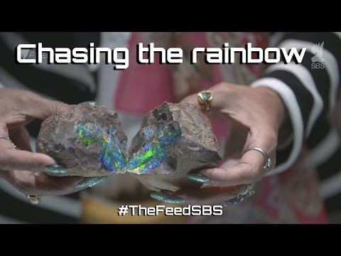 Chasing the rainbow - The Feed