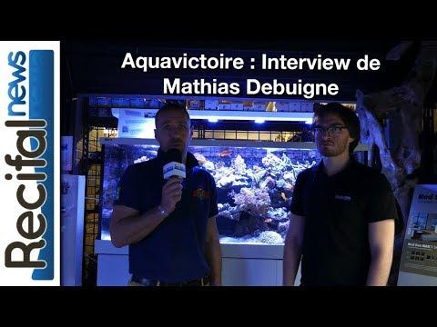 Aquavictoire : Interview de Mathias Debuigne