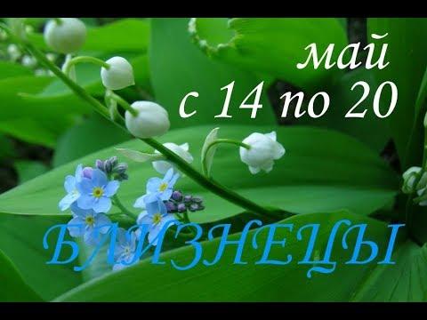БЛИЗНЕЦЫ. ТАРО-ПРОГНОЗ на НЕДЕЛЮ с 14 по 20 МАЯ 2018г.