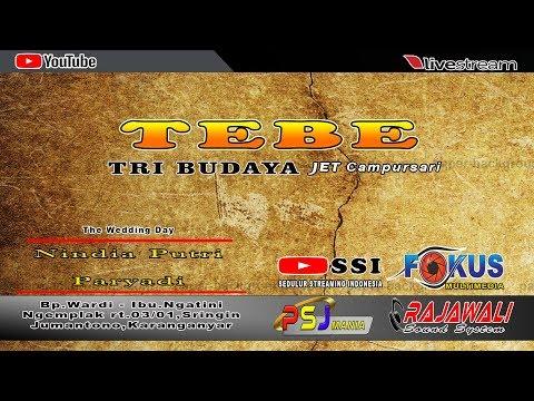 LIVE PERNIKAHAN NINDIA PUTRI & PARYADI // TRI BUDAYA CAMPURSARI // FOKUS PRO