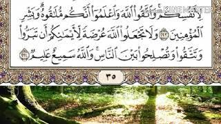 حفظ سورة البقرة الصفحة (35) من الآية (220) الى (224) مكتوبة ومكررة بصوت ماهر المعيقلي