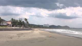 JR日南線青島駅から歩いて10分で見えてくる青島海岸と青島