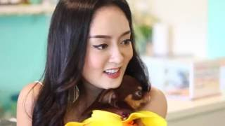 littlest pet shop videos