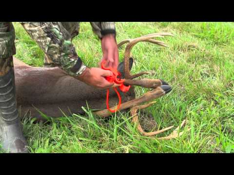 Haulin Venison With The Best Deer Drag Targetcrazy Com