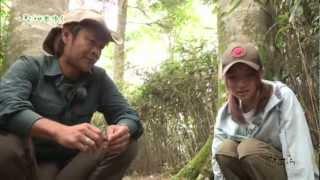 (2012/10月後半放送 starcat ch) 鉄崎幹人さんと未来さんが、名古屋近郊...